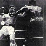 le combat de boxe le plus long de l'histoire